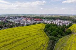 """""""Pańskie pola"""" - Pszów"""